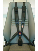 Carfix 5-Point Harness